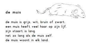 de muis
