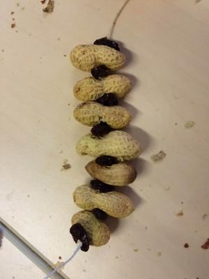Slinger van pinda's en rozijnen