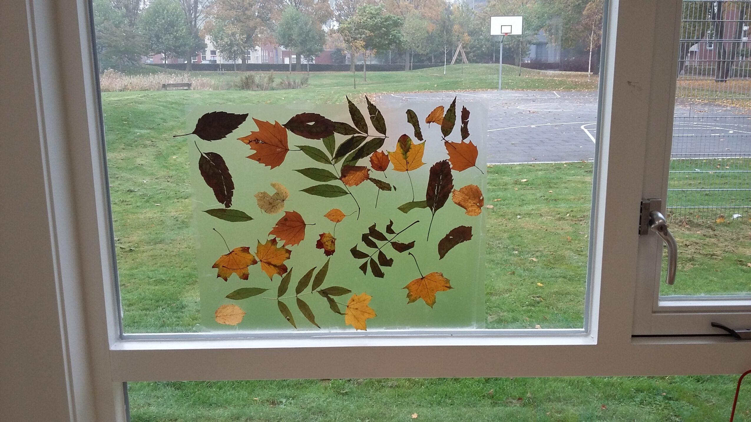 Herfstbladeren met folie op het raam
