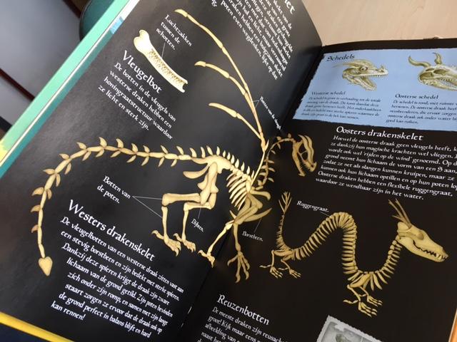 Het boek draak