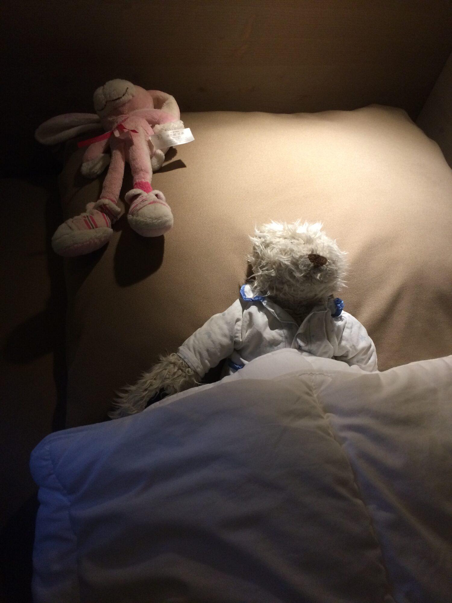 Flip de beer naar bed